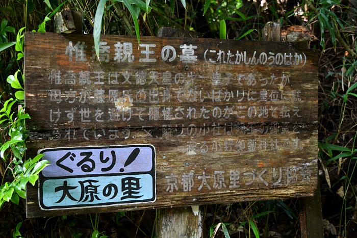f:id:sasurai1:20210626232624j:plain