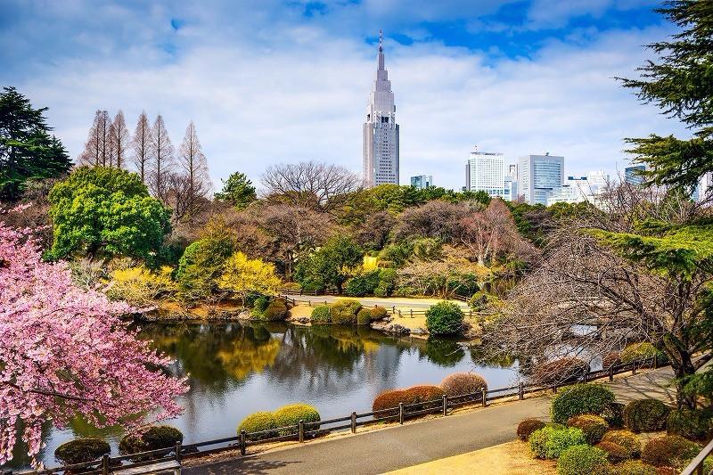 「東京御苑」の画像検索結果