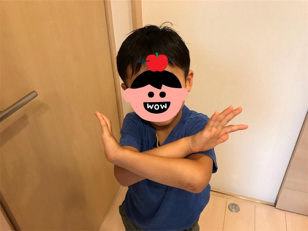 f:id:satkoto:20180721165835j:image