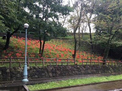 f:id:sato-kazuo:20160924093234j:plain