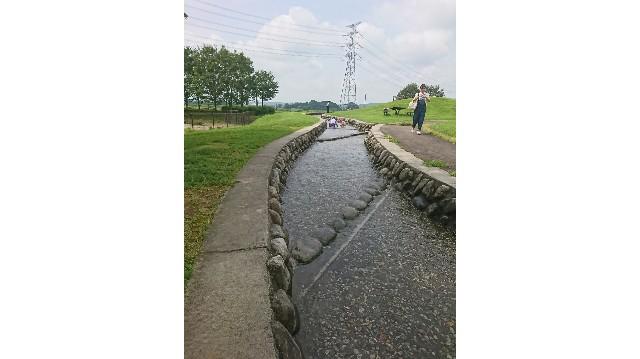 なかがわ水遊園の人工の川の写真