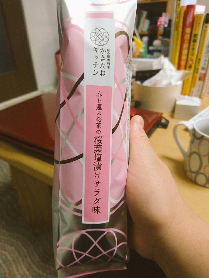 f:id:satoko_kobun:20170313214035j:plain