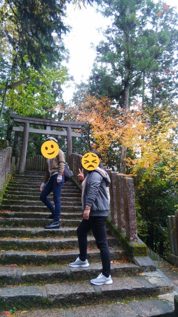 f:id:satoko_kobun:20171119231143j:plain