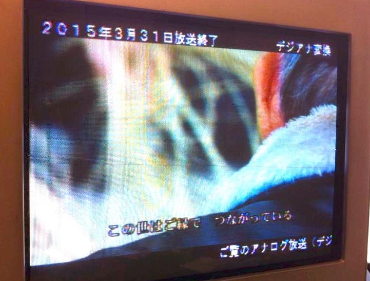 f:id:satoko_ochiai:20150102210457j:image:w300