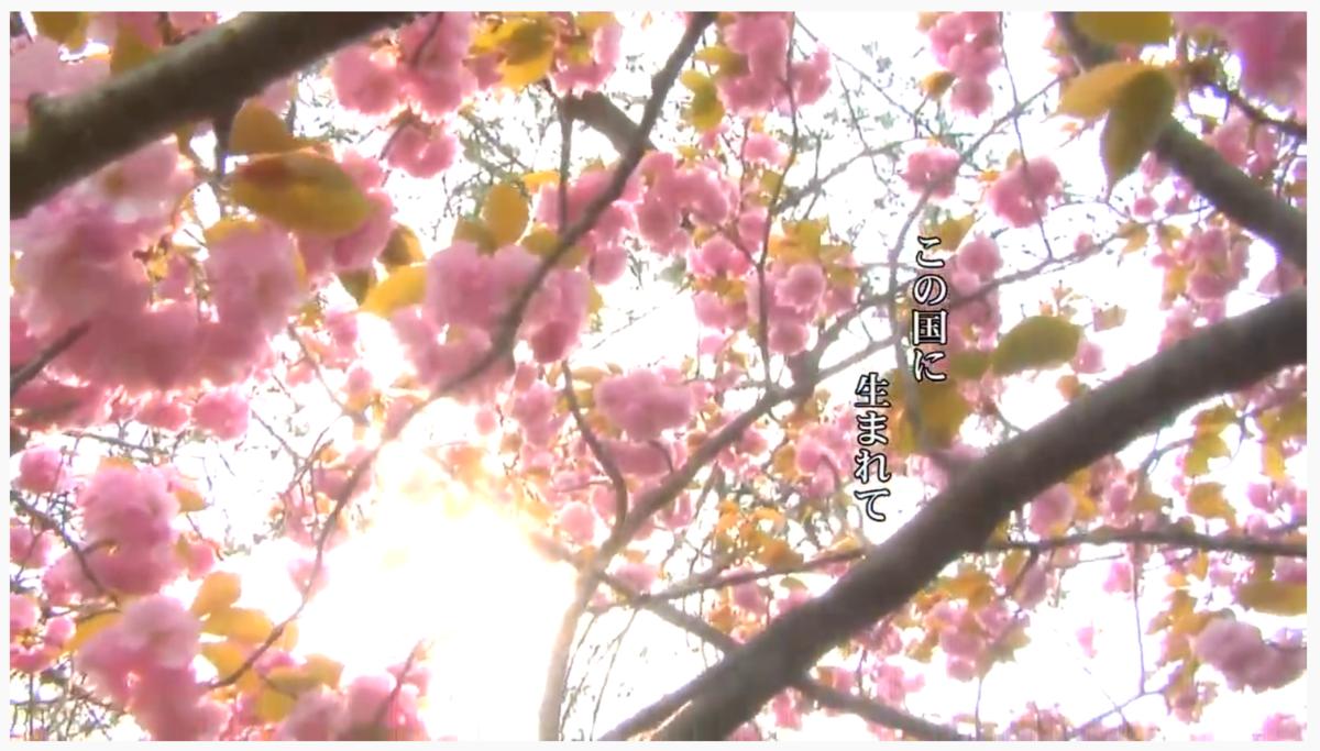 f:id:satoko_ochiai:20200401192956p:plain