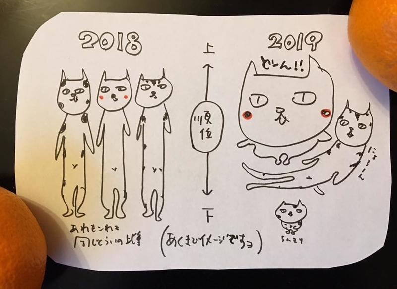 f:id:satokoochiai:20190103172847j:image:w360