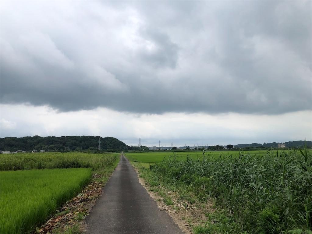 f:id:satomi-tanaka:20190718171858j:image