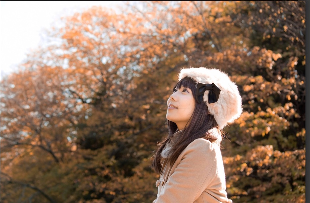 f:id:satomi-tanaka:20191019120107j:image