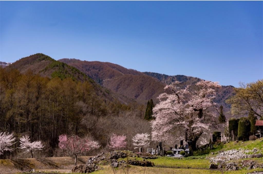 f:id:satomi-tanaka:20200326170838j:image