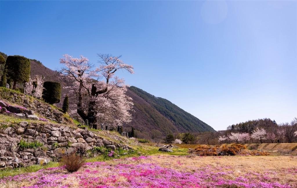 f:id:satomi-tanaka:20200413231851j:image