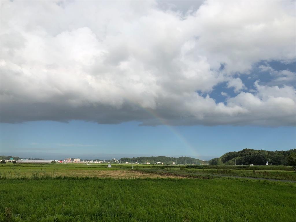 f:id:satomi-tanaka:20200415085815j:image