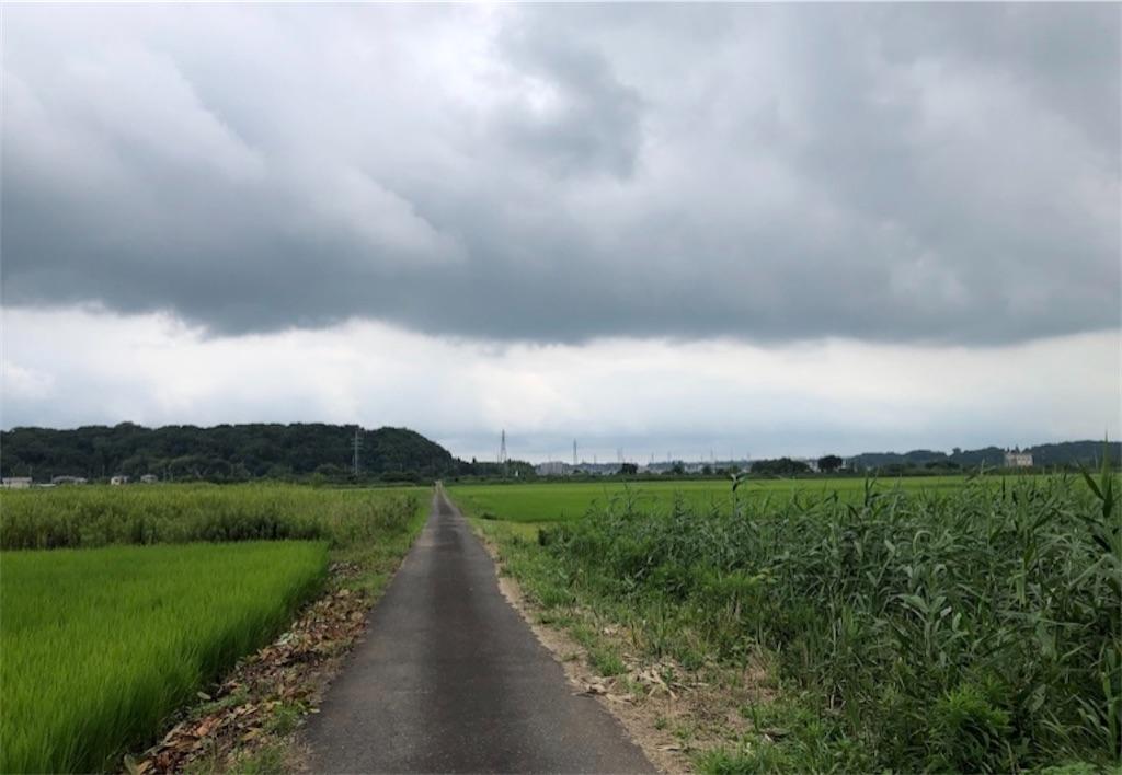 f:id:satomi-tanaka:20201021231620j:image