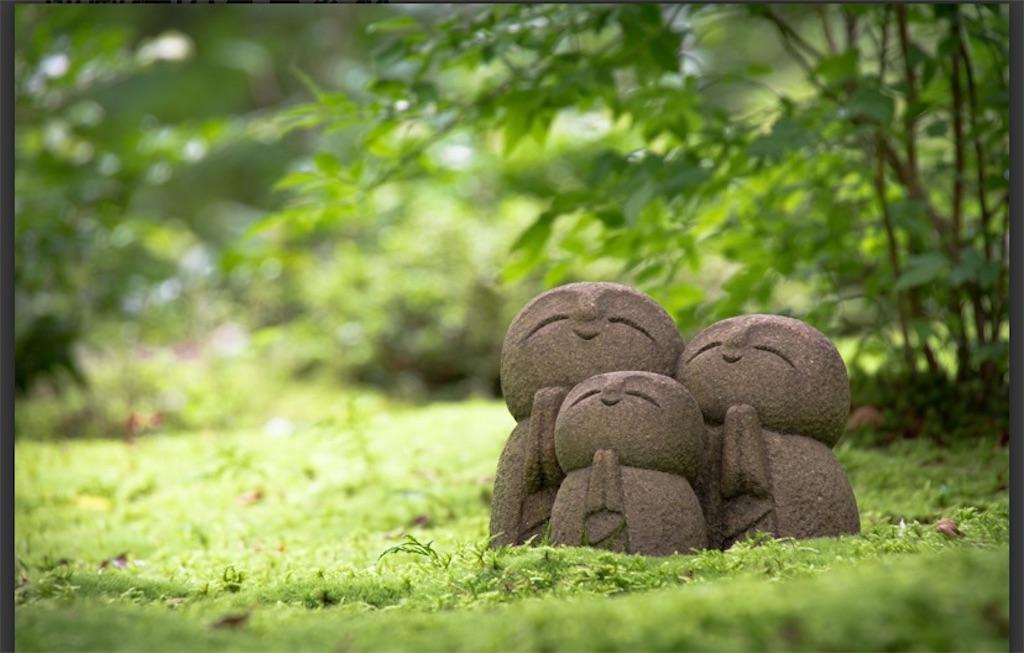 f:id:satomi-tanaka:20201217201623j:image
