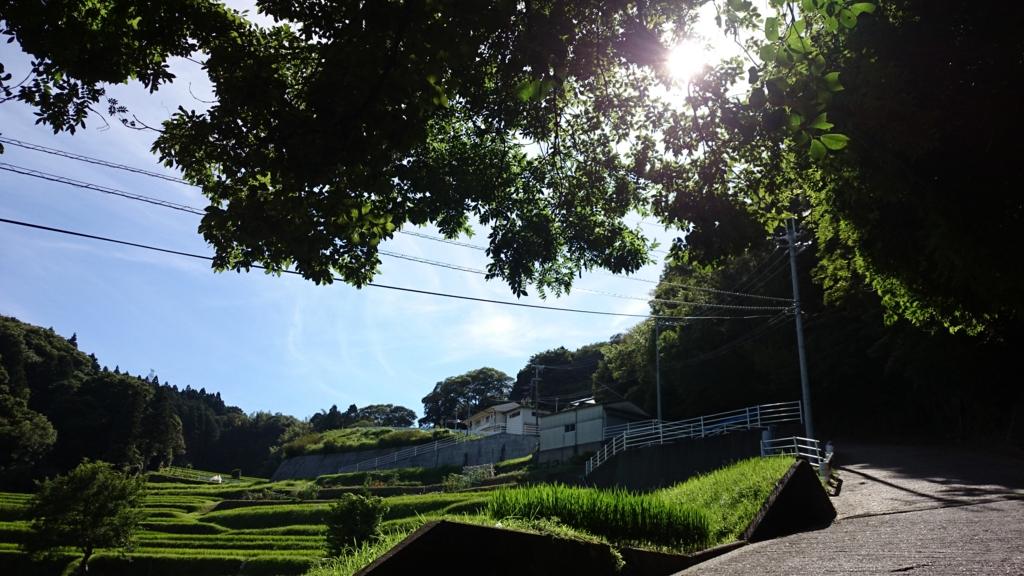 f:id:satomi_com:20150726210351j:plain