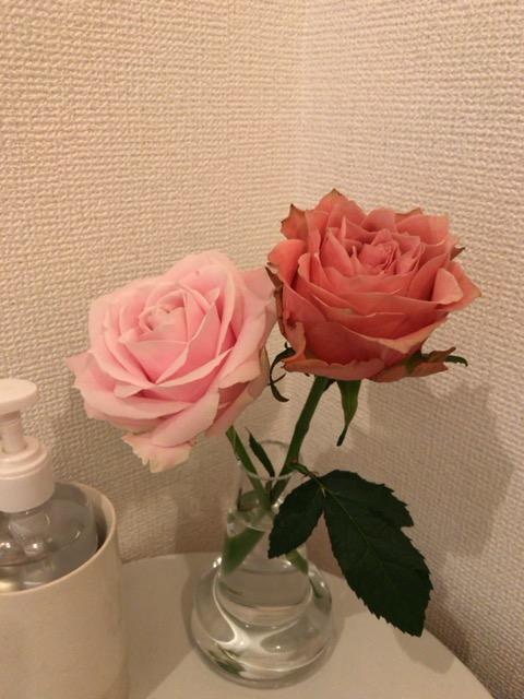 f:id:satonoyukiko:20210122063330j:plain