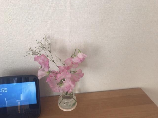 f:id:satonoyukiko:20210309064805j:plain