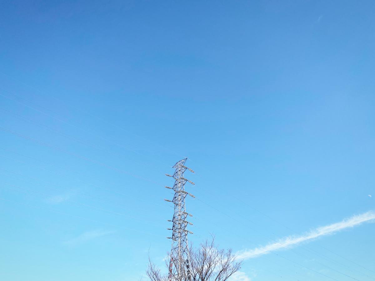 f:id:satoru-itabashi:20200507105346j:plain