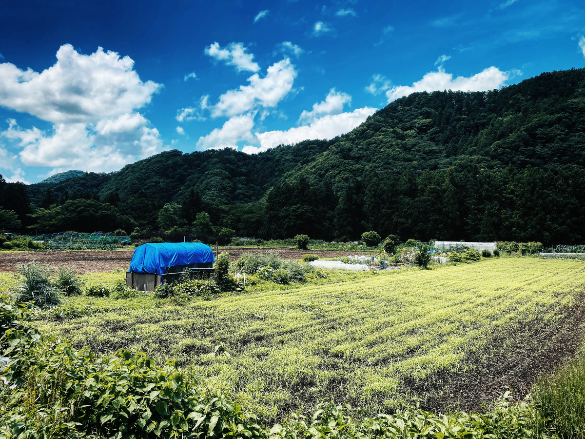 f:id:satoru-itabashi:20200621085254j:plain