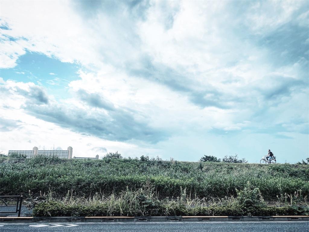 f:id:satoru-itabashi:20200726185406j:image