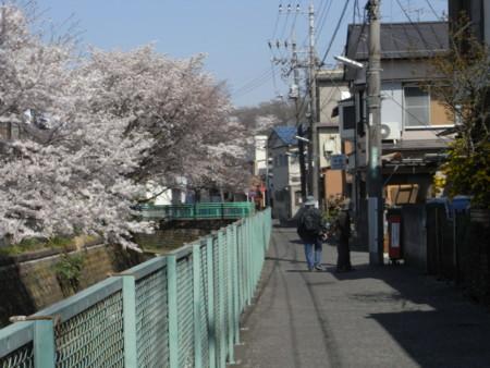 f:id:satoru_net:20090407134359j:image