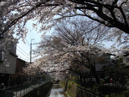 f:id:satoru_net:20090407134459j:image