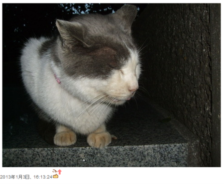 f:id:satoru_net:20130316064439p:image