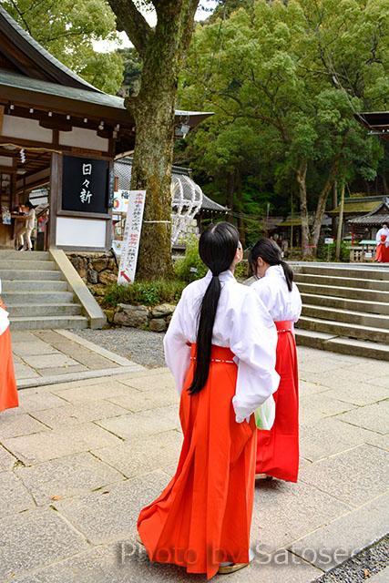 神社 京都 巫女