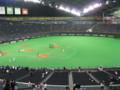 [野球観戦]2009日本シリーズ札幌ドーム8