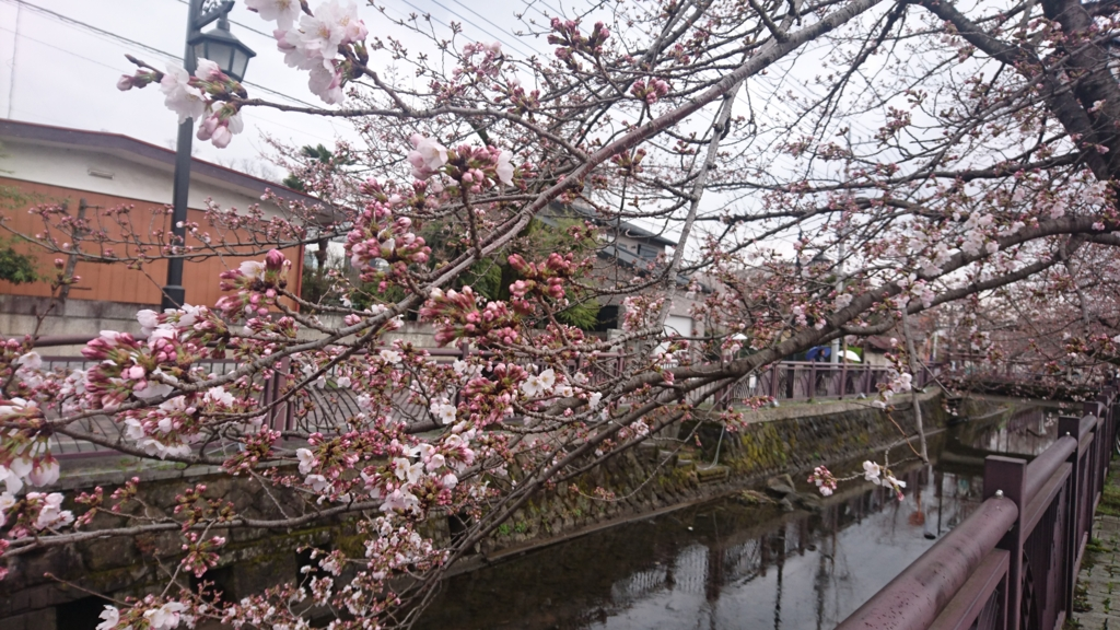 f:id:satoshi_hashimoto:20170401200827j:plain