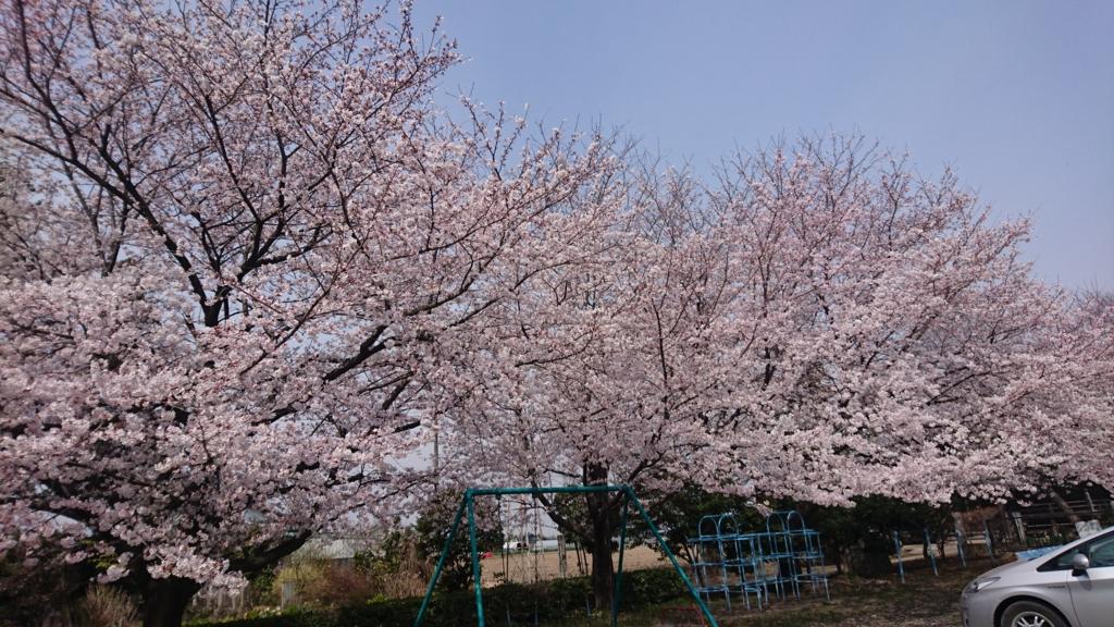 f:id:satoshi_hashimoto:20170406185840j:plain