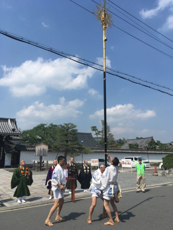 f:id:satoshi_kodama:20170514140626j:image