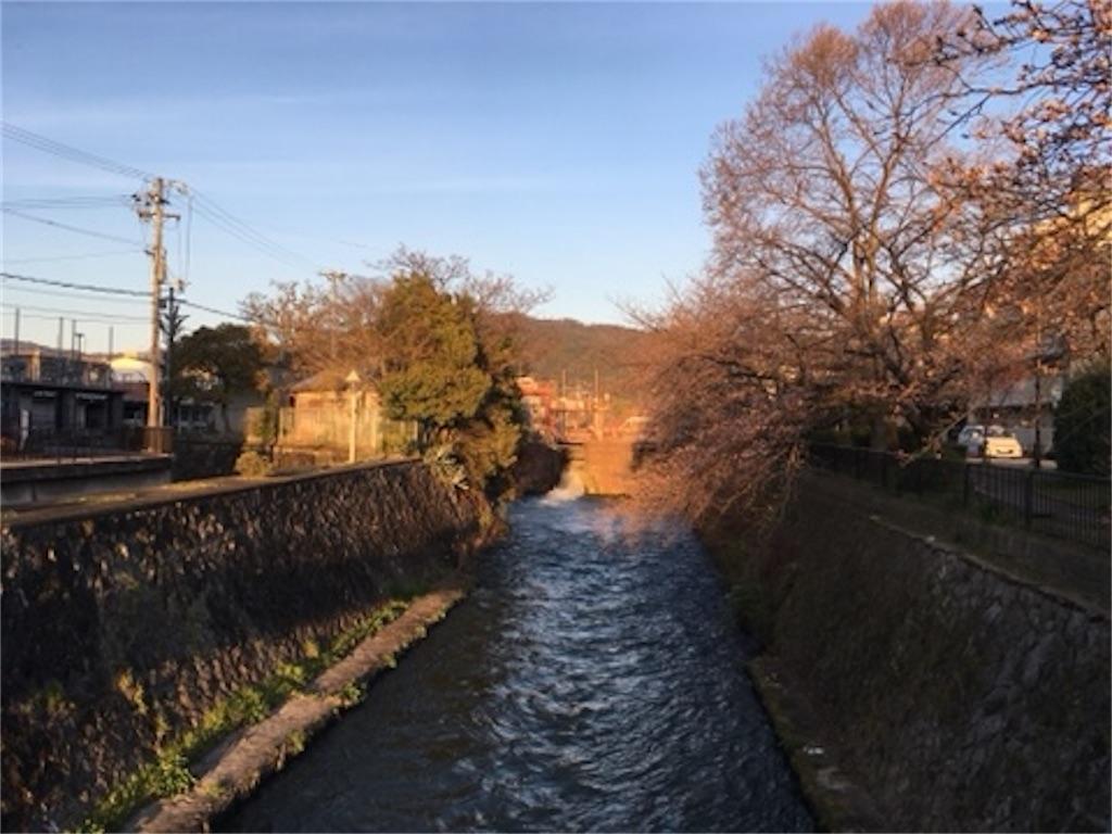 f:id:satoshi_kodama:20200325194342j:image
