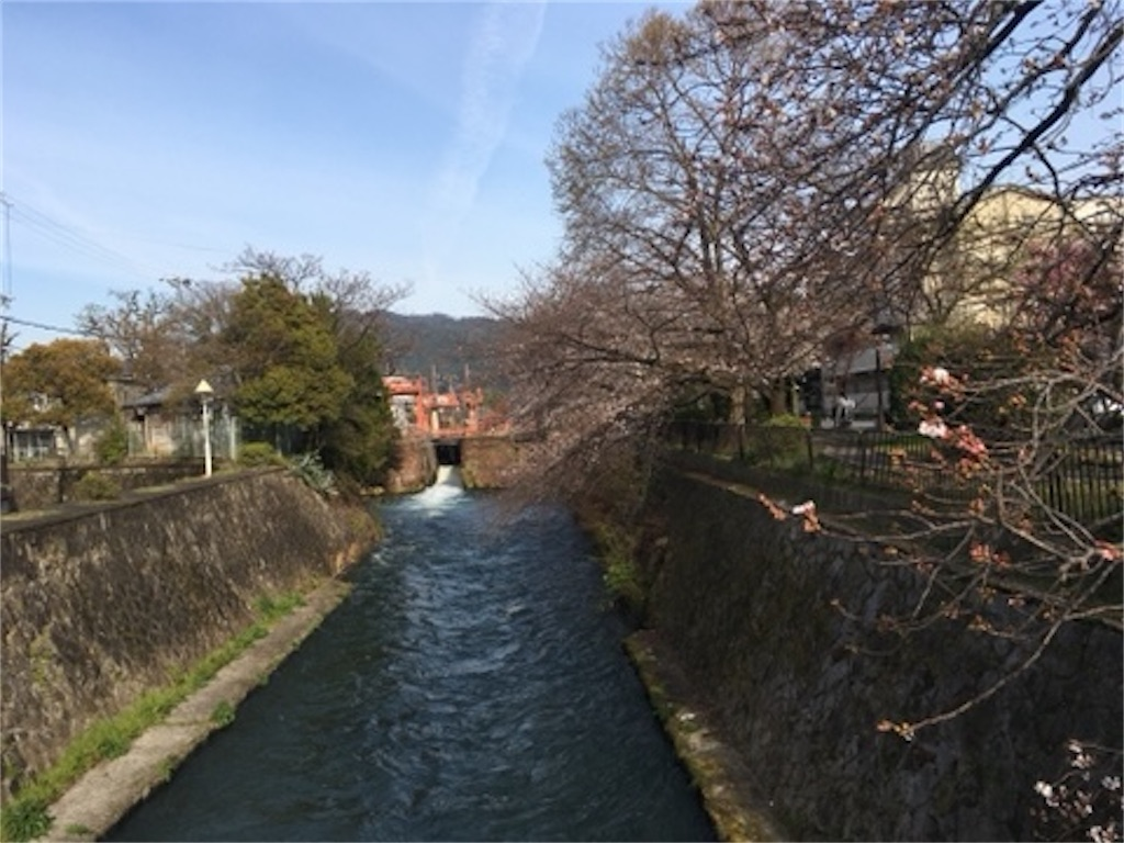 f:id:satoshi_kodama:20200326223538j:image