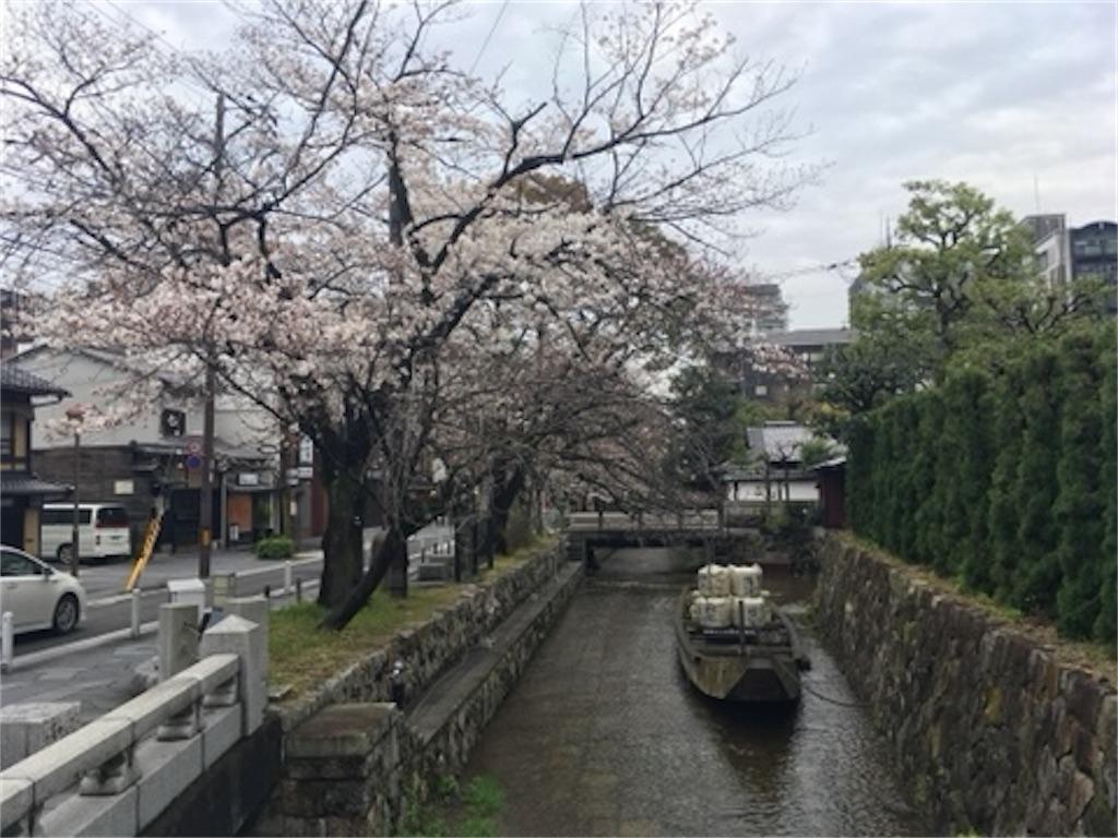 f:id:satoshi_kodama:20200327220312j:image