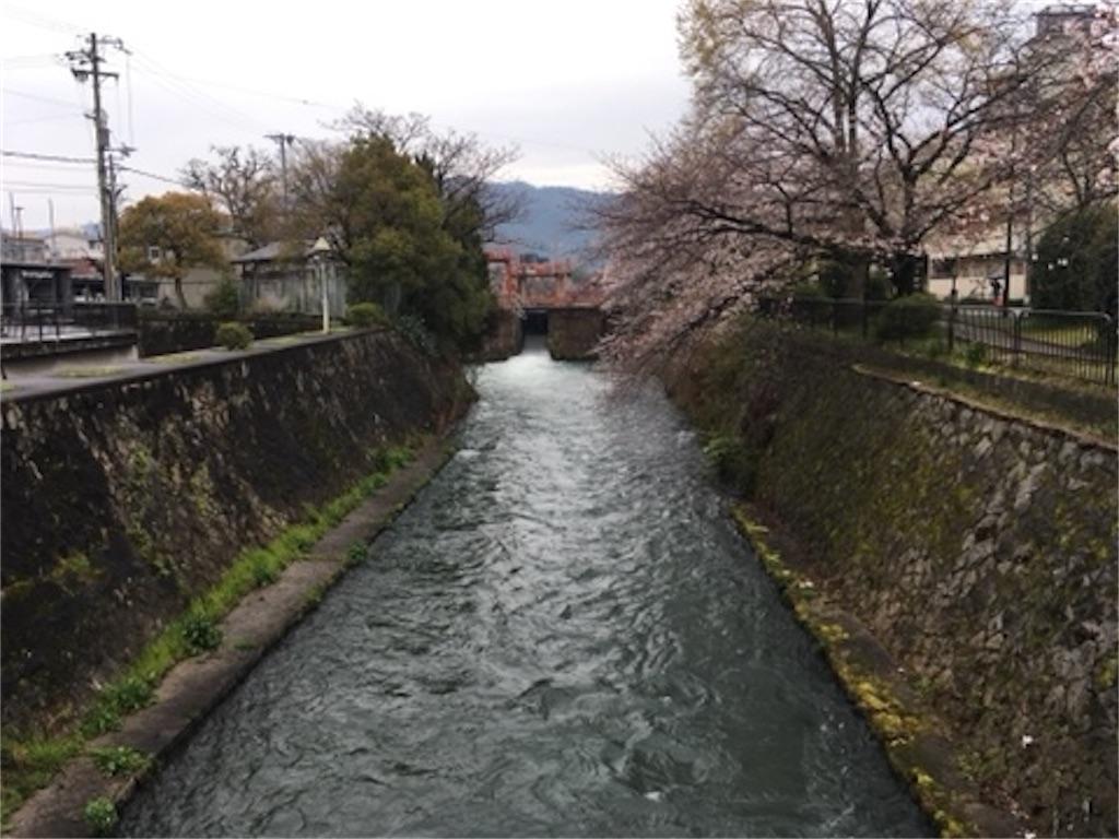 f:id:satoshi_kodama:20200327220319j:image