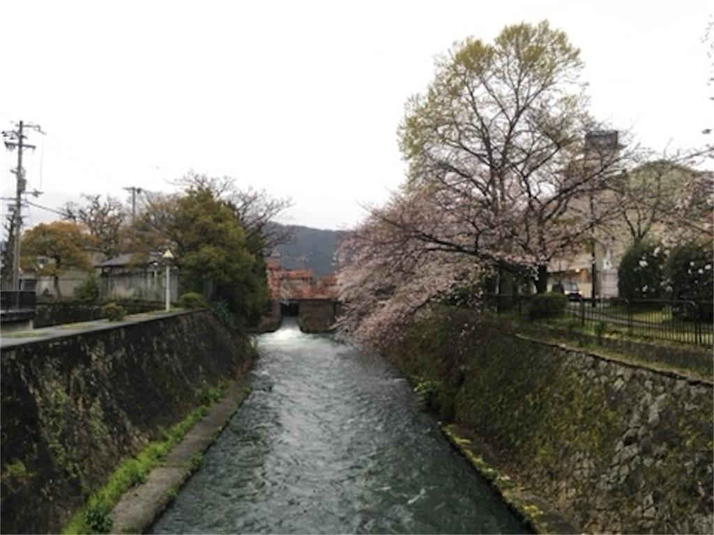 f:id:satoshi_kodama:20200328221630j:image