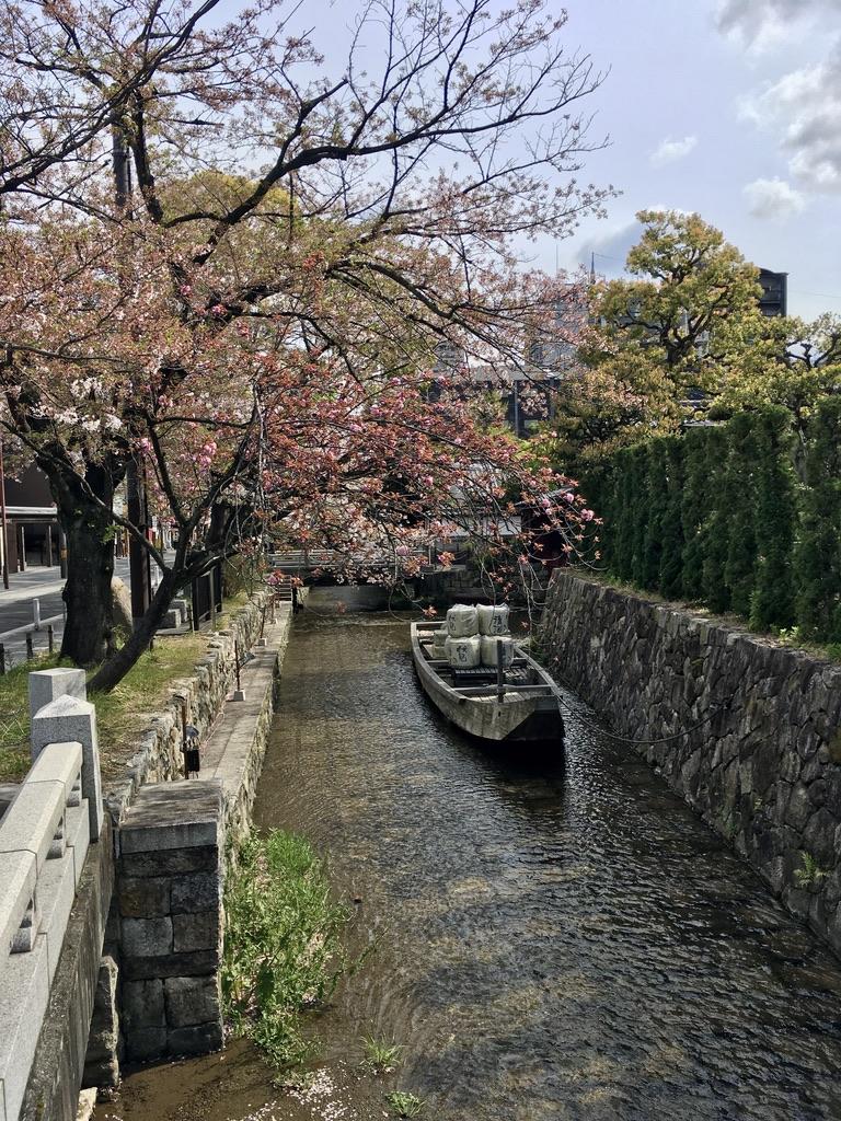 f:id:satoshi_kodama:20200411144619j:plain