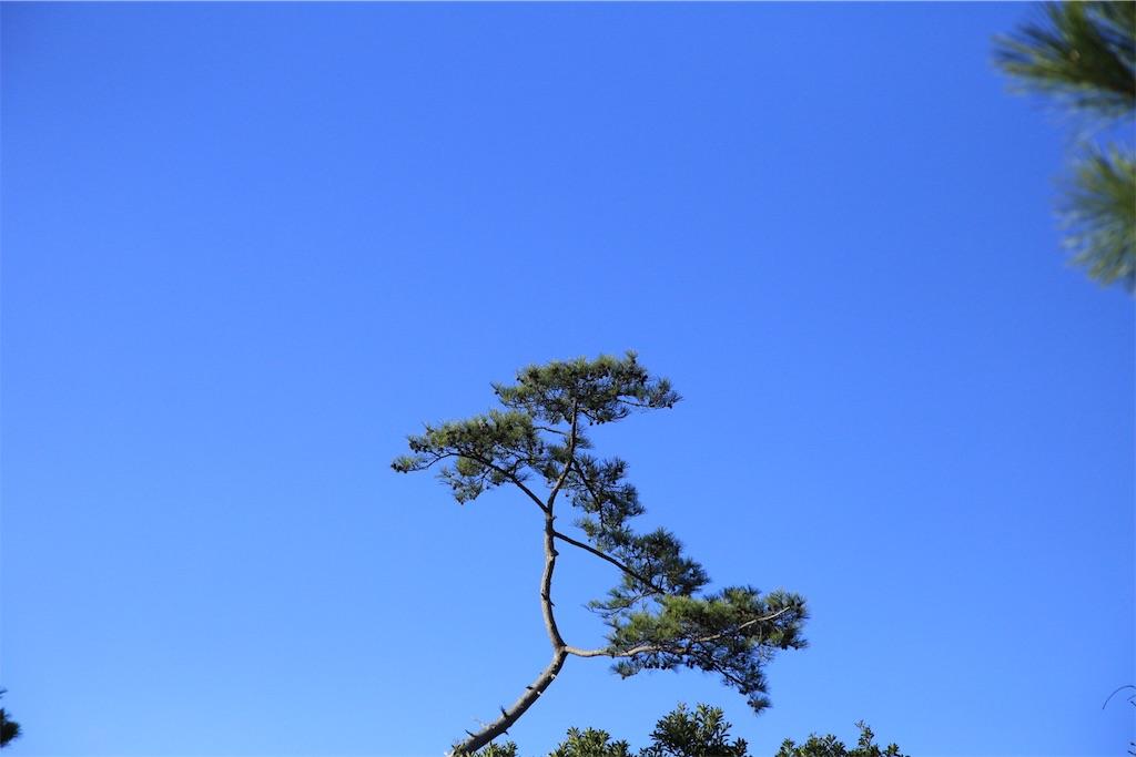 f:id:satoufayukio:20161231081453j:image