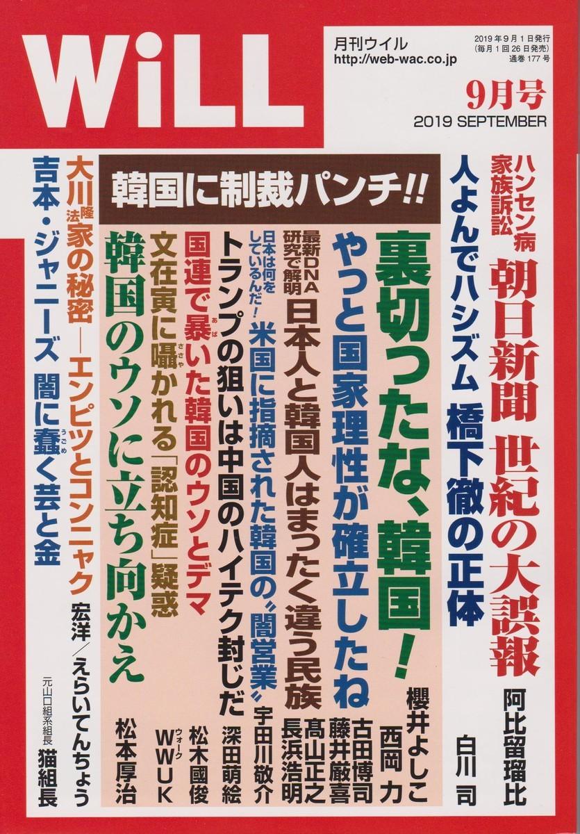 f:id:satoumamoru:20190726133336j:plain