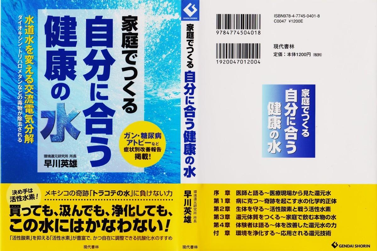f:id:satoumamoru:20191229141222j:plain