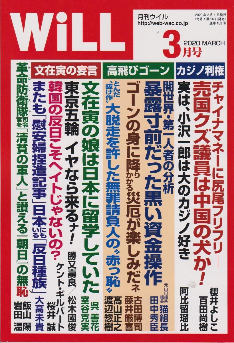 f:id:satoumamoru:20200124124206j:plain
