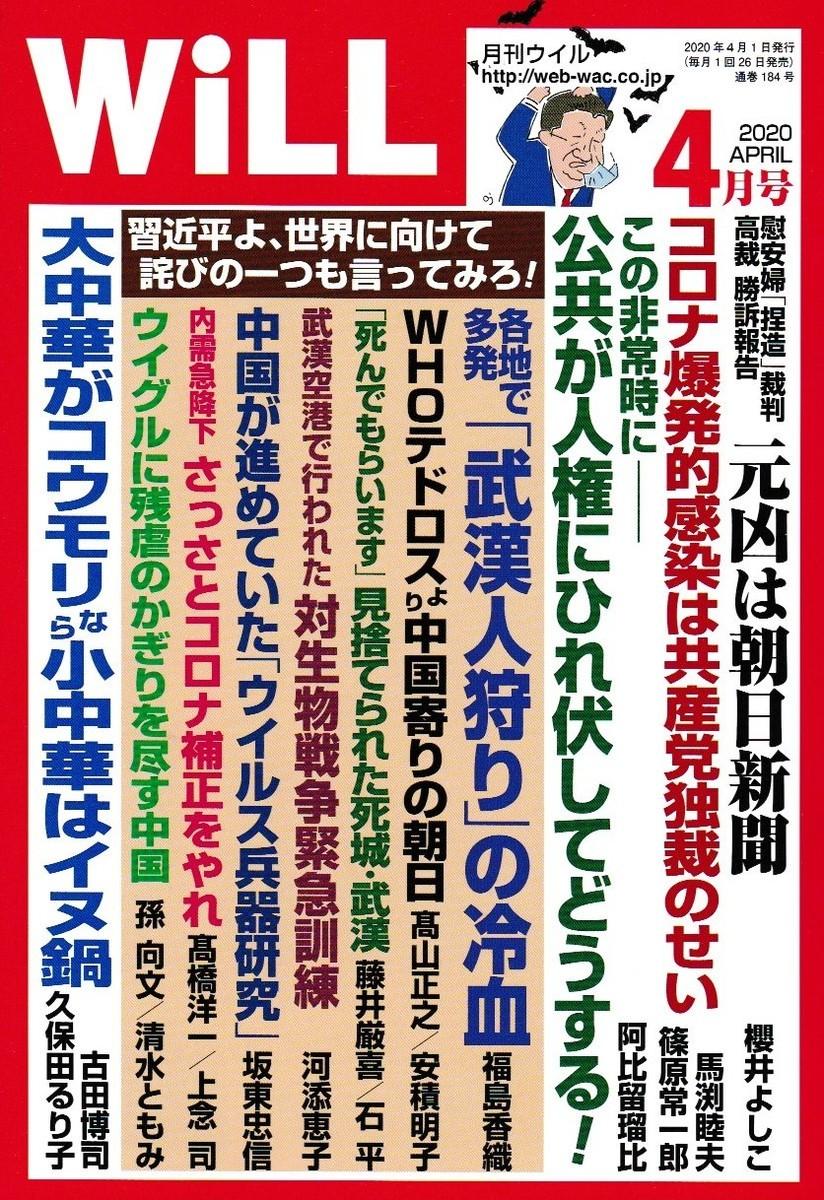 f:id:satoumamoru:20200228171529j:plain