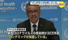 f:id:satoumamoru:20200403172616j:plain
