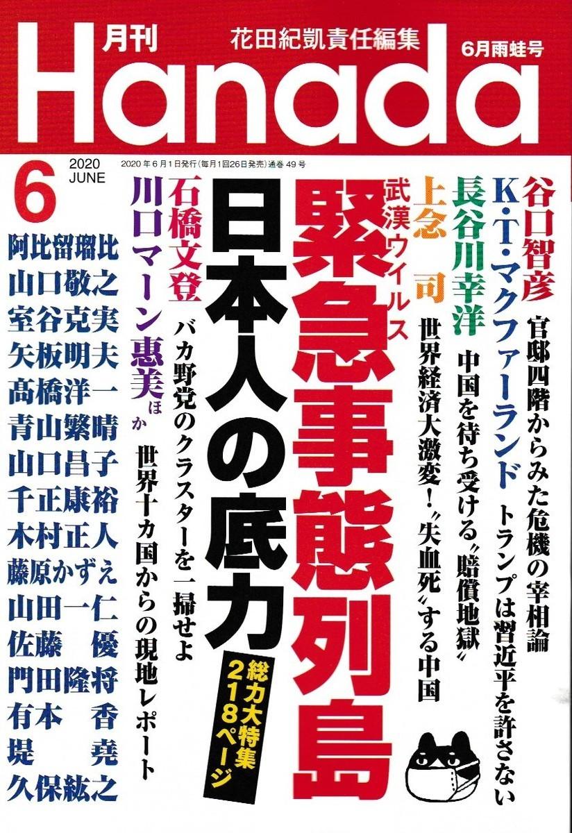 f:id:satoumamoru:20200424142756j:plain