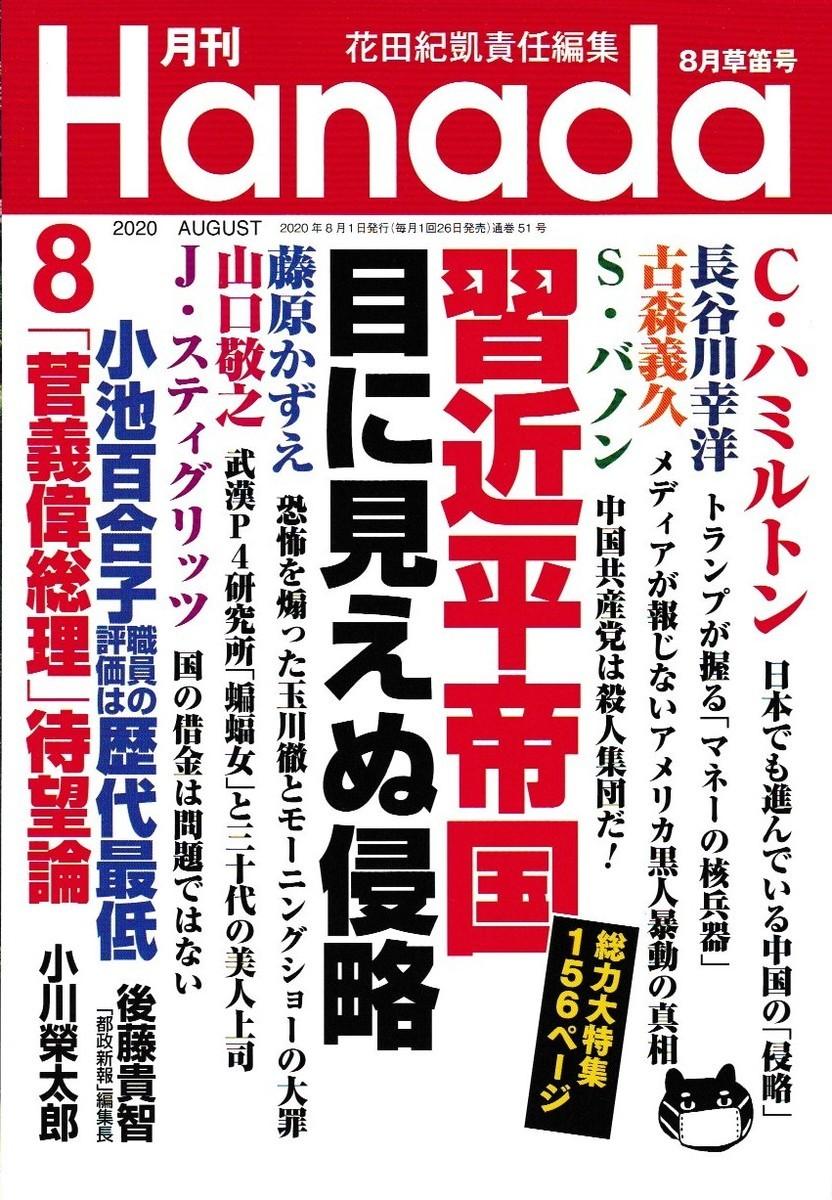 f:id:satoumamoru:20200626200542j:plain