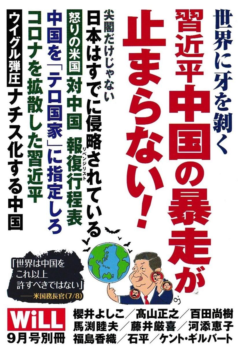 f:id:satoumamoru:20200804114323j:plain