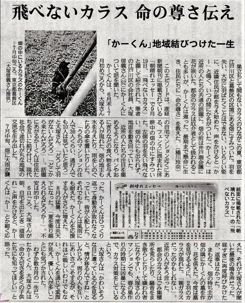 f:id:satoumamoru:20201018165059j:plain