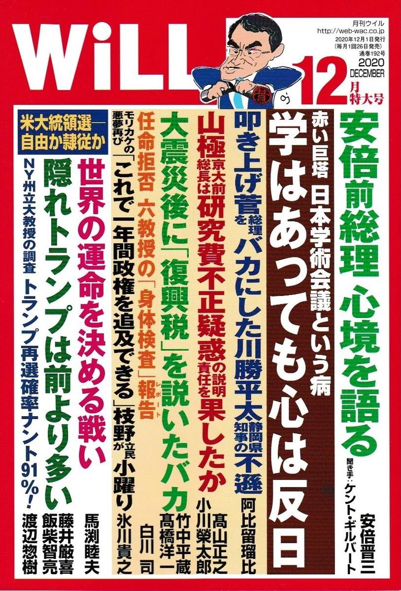 f:id:satoumamoru:20201030173405j:plain
