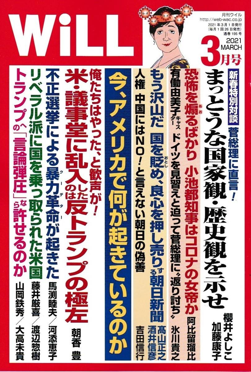 f:id:satoumamoru:20210126151926j:plain