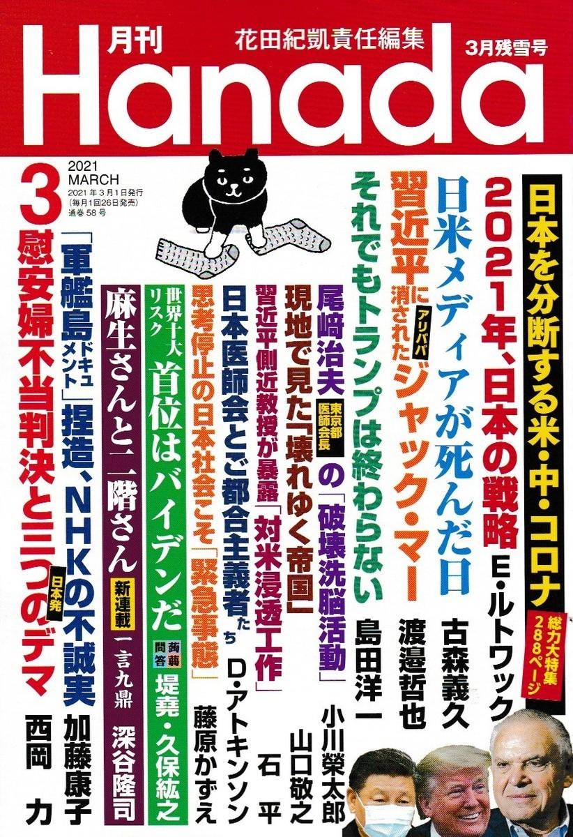 f:id:satoumamoru:20210126152036j:plain